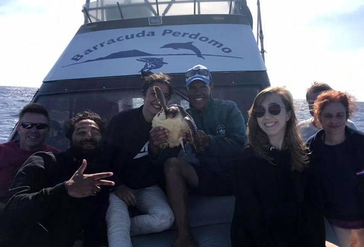 El Barracuda libera una tortuga atrapada en las redes de los furtivos