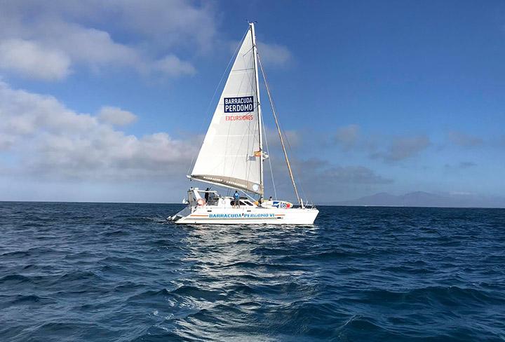 Barracuda incorpora un nuevo catamarán a su flota