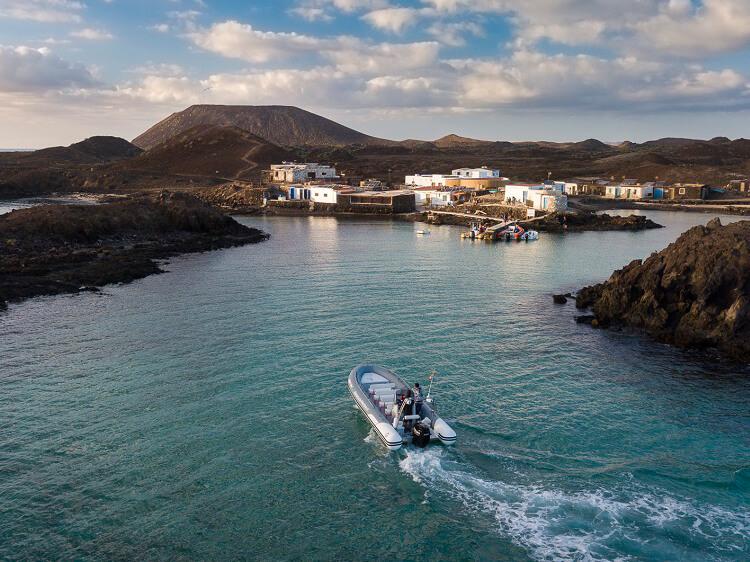 Barracuda Perdomo Fuerteventura Excursiones Pesca